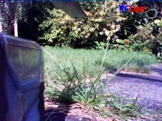 AFTER >: Mini Titan Cobra Gum Cam