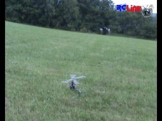 < BEFORE: �bungsflug mit dem T-Rex 500