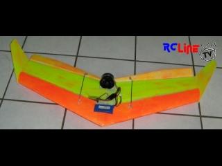 Dizzy Bird mit EDF55 Onboard-Video