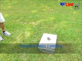< BEFORE: My first palm landing