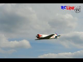 Flugtag Freckenfeld 2008 11