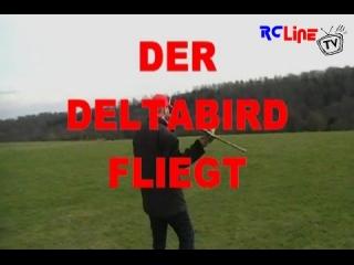 Deltabird, ein Untertapeten-Delta mit Hongkong-Motorisierung