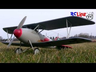 Albatros D.V von Alfamodel